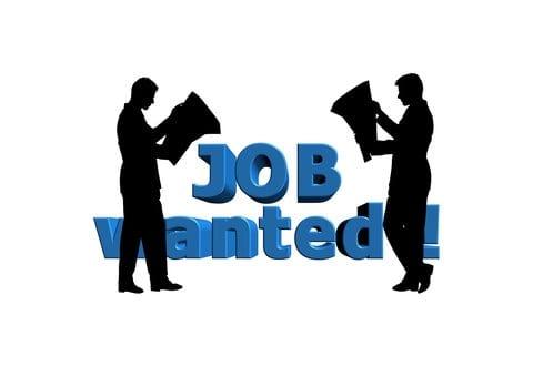 wij willen en zoeken werk